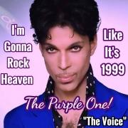 Prince-I'm Gonna Roc heaven